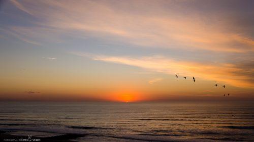 amanecer-costas-miramar-argentina-4-conejo-verde