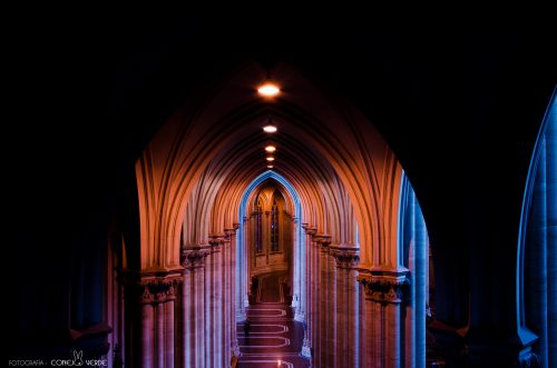 catedral-la-plata-argentina-2-conejo-verde