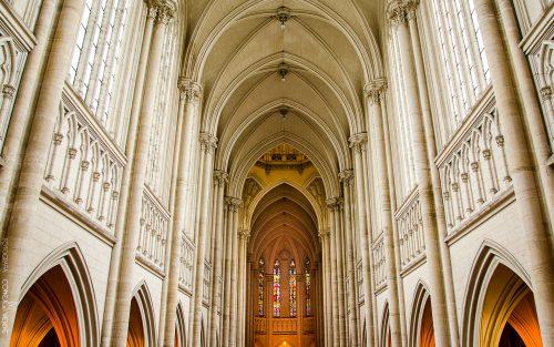 catedral-la-plata-argentina-3-conejo-verde