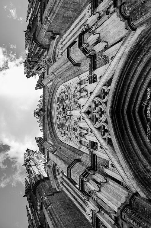 catedral-la-plata-argentina-5-conejo-verde